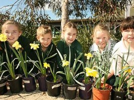 Pleasant spring weather is forecast for this week, just in time for the opening of Leongatha's Daffodil Festival on Thursday. Leongatha Primary School students, from left, Molly, Brodie, Julia, Hannah and Sally are excited about seeing Grade 2 students' daffodils on display during the festival.