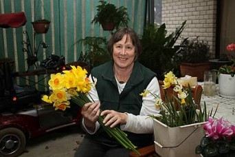 First rate flowers: Sue Thompson, president of the Leongatha Horticultural Society and secretary of the Victorian Daffodil Society, with flawless daffodils from her garden, some of which will be on display at the Leongatha Daffodil Festival next week.