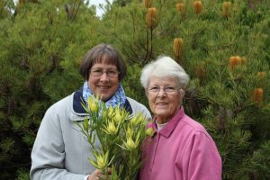 Flourishing events: from left, Leongatha Horticultural Society's Sue Thompson and Margaret Fox are preparing for another exciting year with the Leongatha Daffodil Festival booked to bloom in late August.