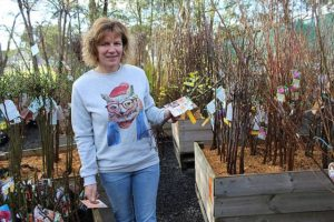 Gardeners' delight: Kelly Hughes with Betty Cuthbert, a pretty apricot rose named in honour of the famed Olympian. Kelly was surrounded by a forest of bare rooted plants in the Burra Garden Supplies nursery. With hundreds more still to arrive, the rush was already on early on Thursday morning.